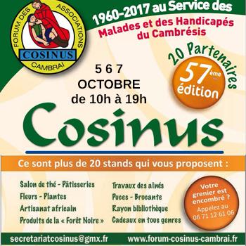 COSINUS_ENCART_2018.jpg